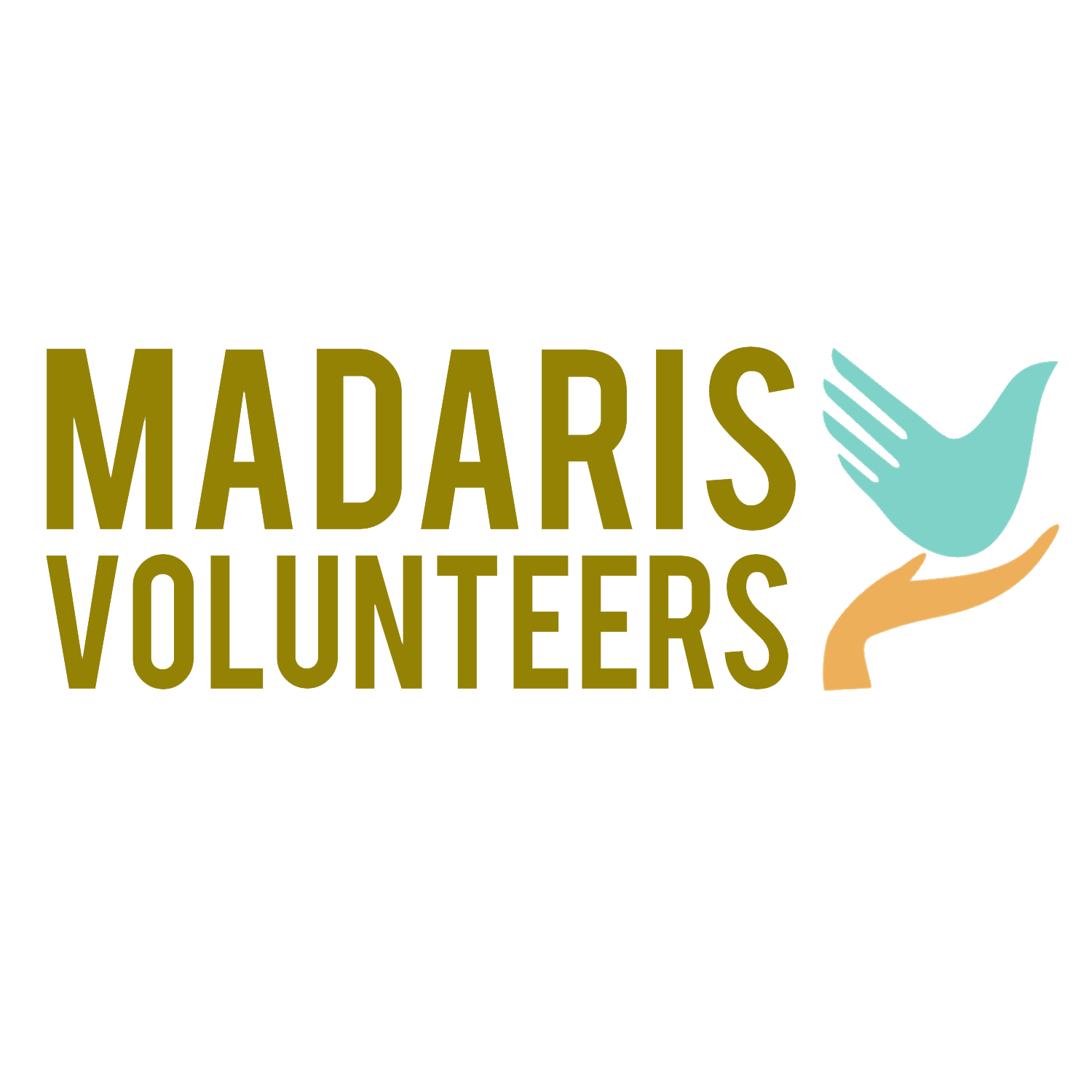 Madaris Volunteer Program